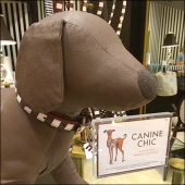 Canine Chic by Henri Bendel CloseUp 1